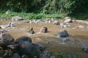 Chiang Mai- Elefanten- Trekking- Thailand