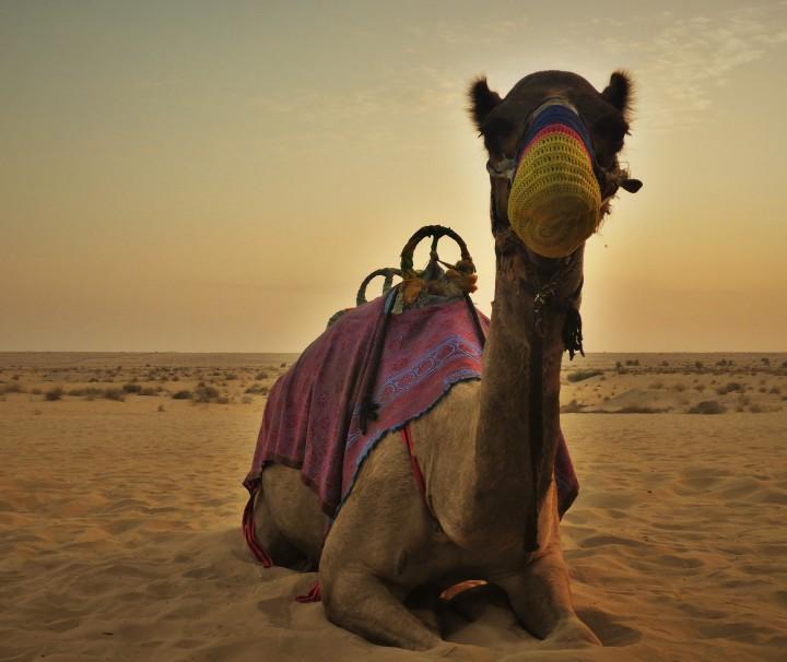 Dubai leute kennenlernen
