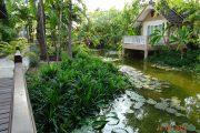 Hotel Thailand Rundreise, Royal Cities, Klassisches Nordthailand, Bungalow, Grün