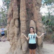 Australien, Darwin, Litchfield National Park, Termitenhügel, Termiten, Lilli, Größenvergleich