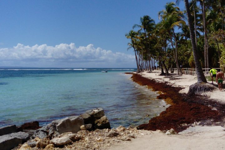 Strand La Caravelle Guadeloupe