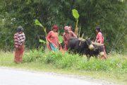 Land und Leute, Nepal, Rundreise