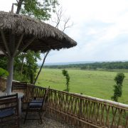 Chitwan Nationalpark, Lodge, Safari, Rundreise, Nepal, Asien, Tiere, Nashorn, Tiger, Elefant