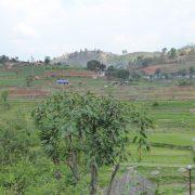 Nepal, Asien, Rundreise, Individualreise, Reisterassen, Reisfelder,