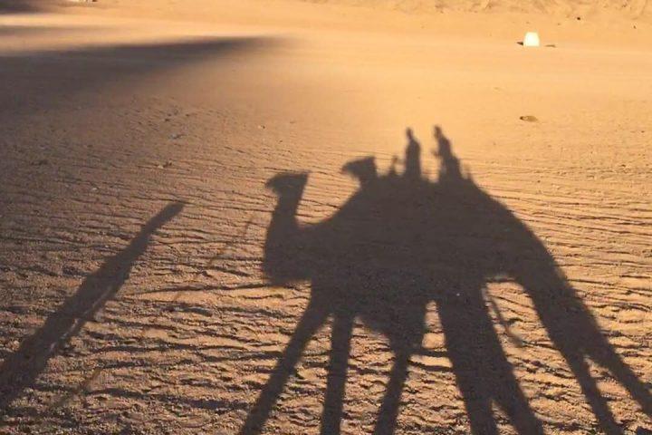 Kamelreiten Ägypten
